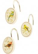 Подробнее о Крючки Avanti Gilded Birds 11984G для шторки (12 штук) цвет белый
